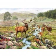 1000 Piece Jigsaw - National Park