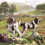 1000 Piece Jigsaw - Spaniels On The Moor