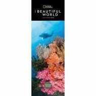 2021 Slim Calendar-Beautiful World