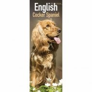 2021 Slim Calendar-Cocker Spaniel