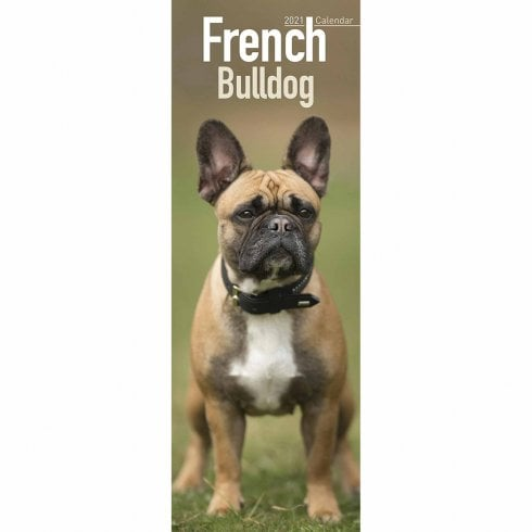 Otter House 2021 Slim Calendar-French Bulldog