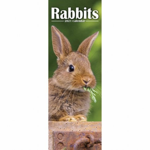 Otter House 2021 Slim Calendar-Rabbits
