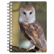 3D Notepad Barn Owl