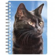 3D Notepad Black Cat