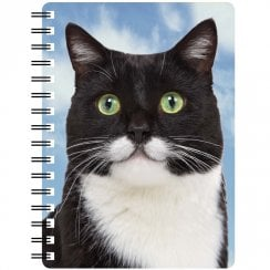 3D Notepad Black & White Cat