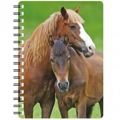 3D Notepad Chestnut Horse With Foal