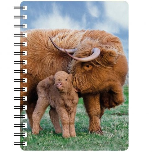 Faithful Friends Collectables 3D Notepad Highland Cow And Calf
