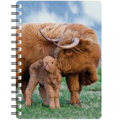 3D Notepad Highland Cow And Calf
