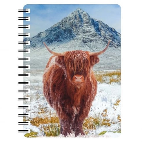 Faithful Friends Collectables 3D Notepad Highland Cow Buachaille