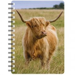 3D Notepad Highland Cow In The Summertime