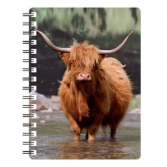 3D Notepad Highland Cow in Water