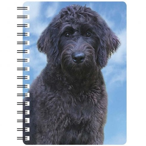 Faithful Friends Collectables 3D Notepad Labradoodle (Black)
