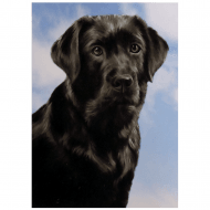 3D Notepad Labrador (Black)