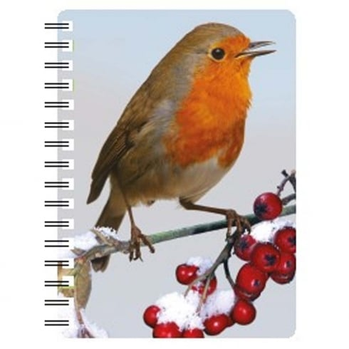 Faithful Friends Collectables 3D Notepad Robin 4