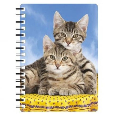 Faithful Friends Collectables 3D Notepad Tabby Kittens