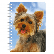 3D Notepad Yorkshire Terrier