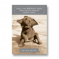 Animal Antics - Elephant Couldnt Stand Up Birthday Card AA013A