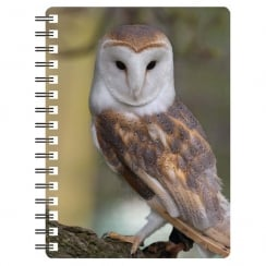 Barn Owl 3D Notebook