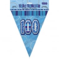 Blue Glitz 100 Flag Banner 12 ft
