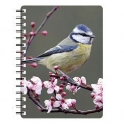 Blue Tit 3D Notebook