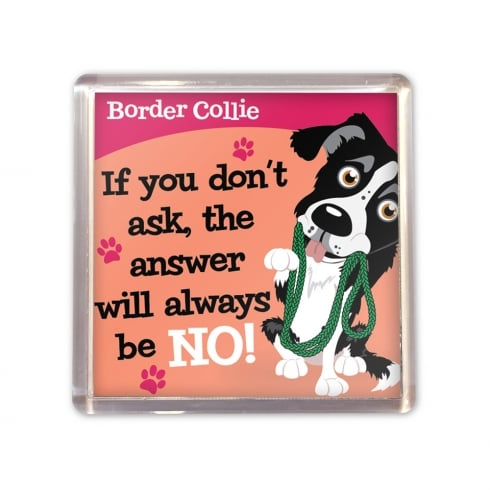 Wags & Whiskers Border Collie Magnet