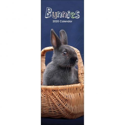 Otter House Bunnies Slim Calendar 2020