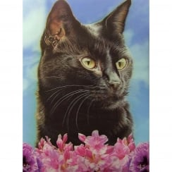 Collectable Faithful Friends Black Cat