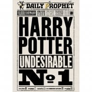 Daily Prophet Undesirable No.1 Card