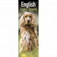 English Cocker Spaniel Slim Calendar 2019