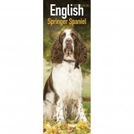 English Springer Spaniel Slim Calendar 2019
