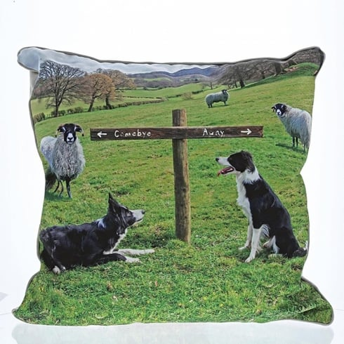 Border Fine Arts Ewe Take The Left Cushion