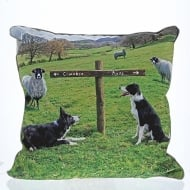 Ewe Take The Left Cushion