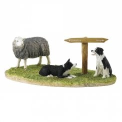 Ewe Take The Left (Herdwick)