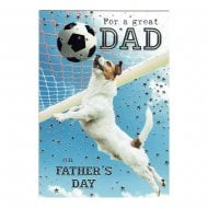 For A Great Dad On Fathers Day Card DF248