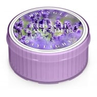 French Lavender Daylight Candle