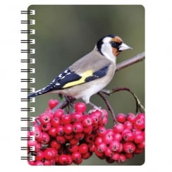 Goldfinch 3D Notebook