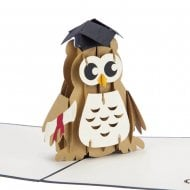Graduation Owl Pop Up Card