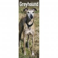 Greyhound Slim Calendar 2020