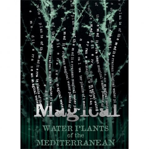Mint Publishing Harry Potter Magical Water Plants Card