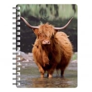 Highland Cow in Water 3D Notebook