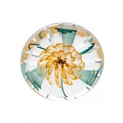 Hot House In A Spin Paperweight