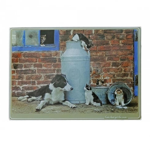 Border Fine Arts Kitchy & Co Cat Got The Cream Trivet Large