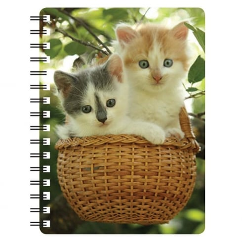 Faithful Friends Collectables Kittens 3D Notebook