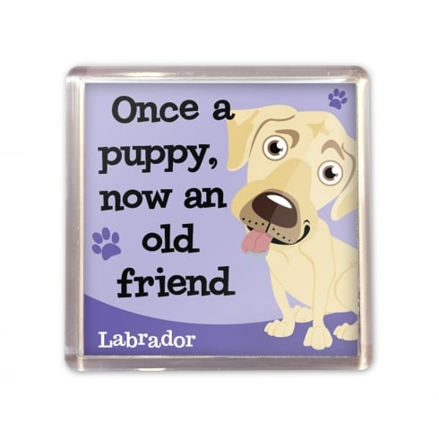 Wags & Whiskers Labrador Cream Magnet