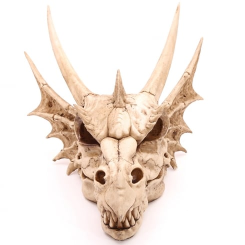 Puckator Large Dragon Skull Decoration