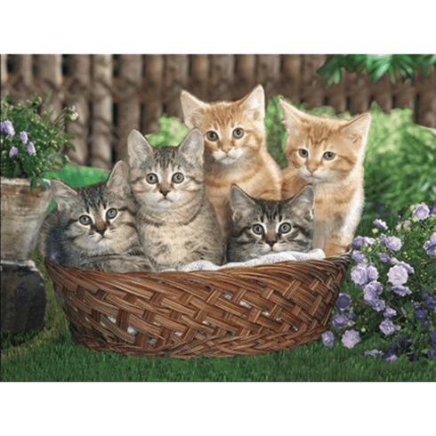 Faithful Friends Collectables Lenticular 3D Picture Kittens