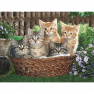 Lenticular 3D Picture Kittens