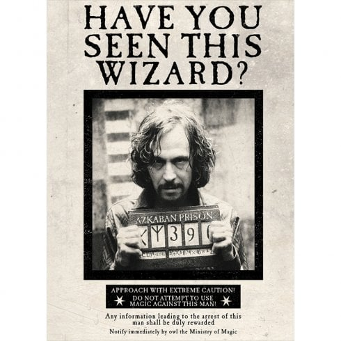 Mint Publishing Lenticular Card Sirius Have You Seen This Wizard