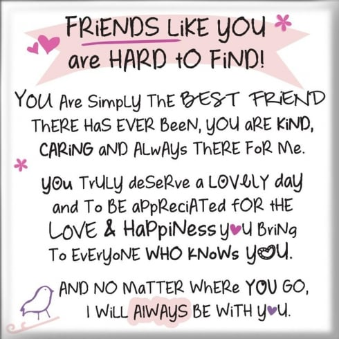 WPL Magnet - Friends Like You Are Hard To Find