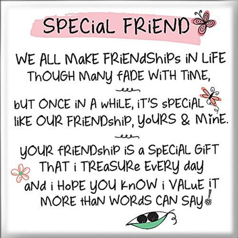 WPL Magnet - Special Friend